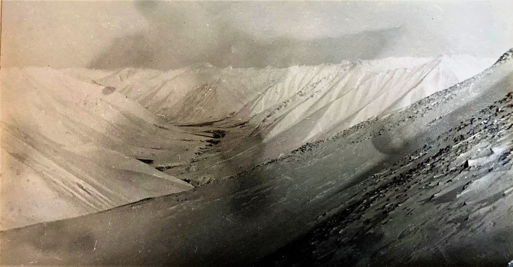 Долина ручья Сурский| skitour.club| Блог Сергея Чеботова