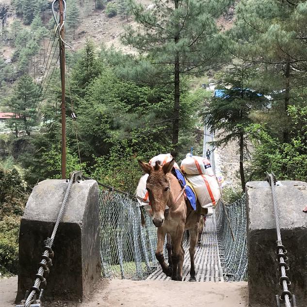 Караваны на своем пути пересекают многочисленные подвесные мосты.