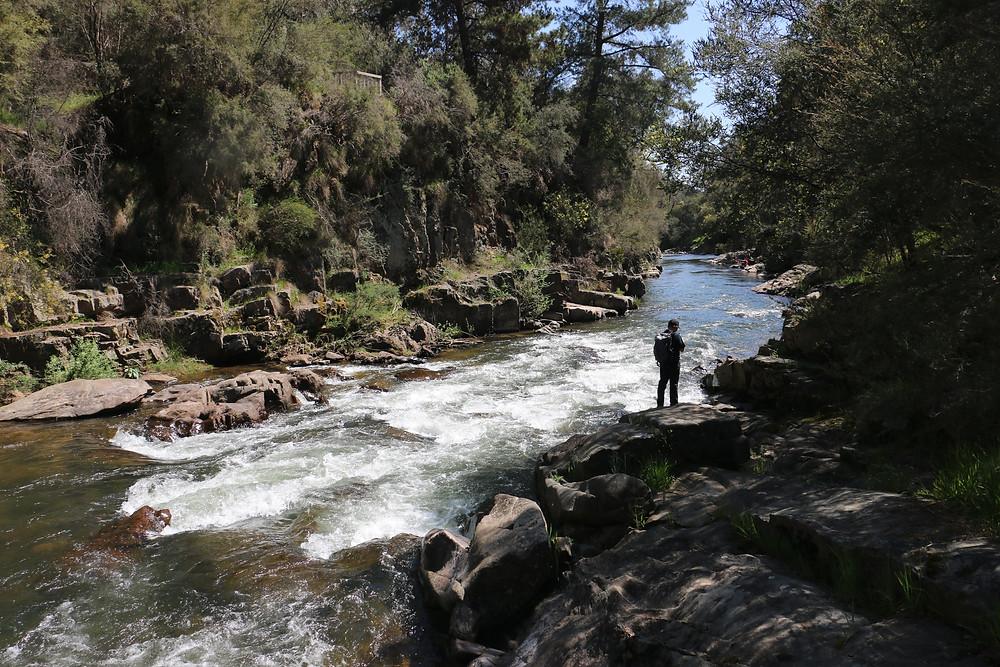 Ovens River| skitour.club| Блог Сергея Чеботова