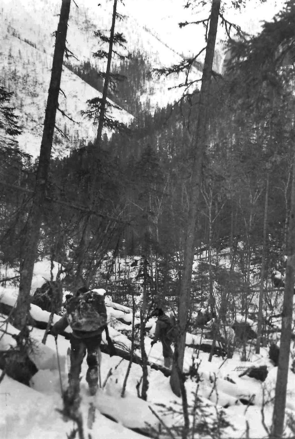 Река Кути  skitour.club  Блог Сергея Чеботова