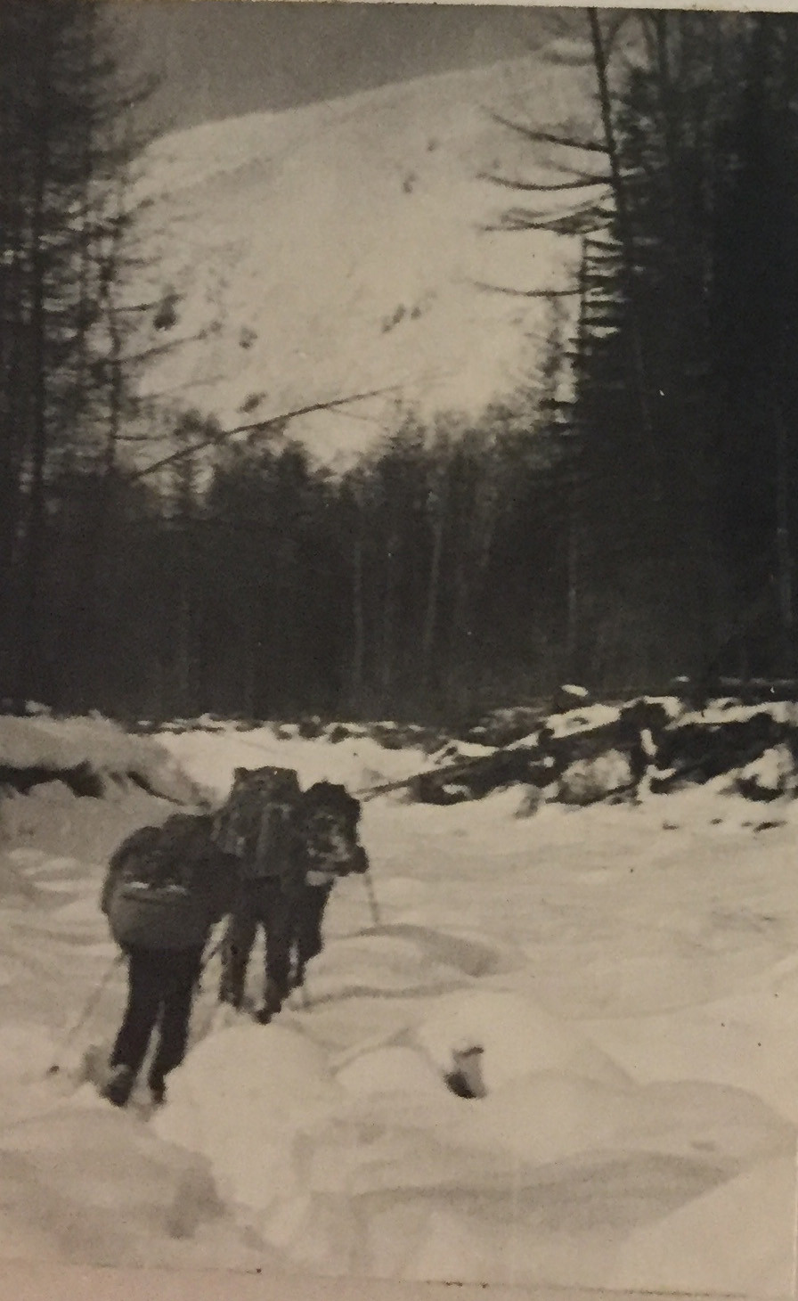 Река Герби| skitour.club| Блог Сергея Чеботова