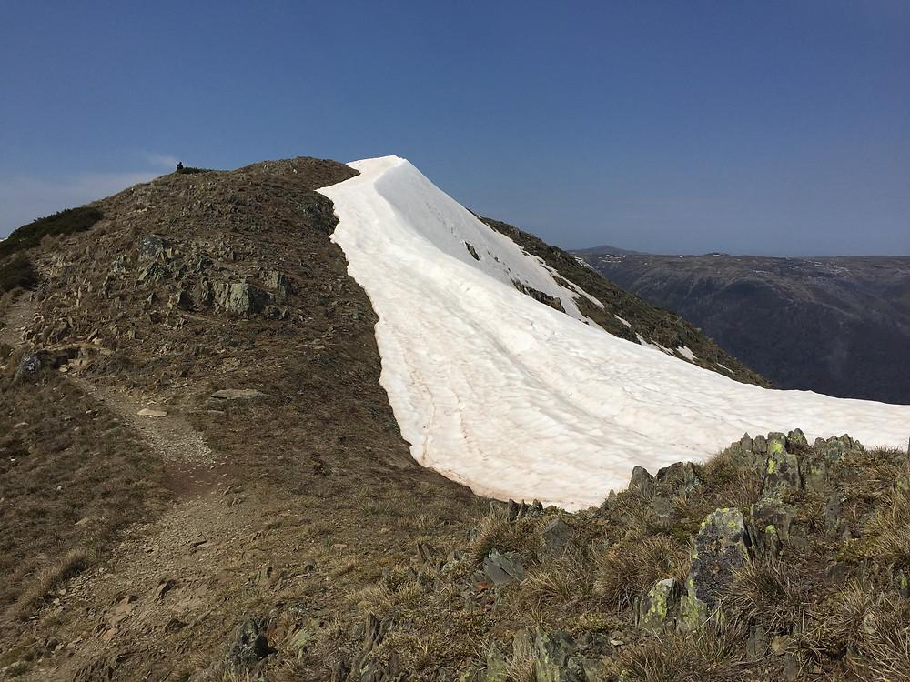 Подъем на вершинуFeathertop| skitour.club| Блог Сергея Чеботова