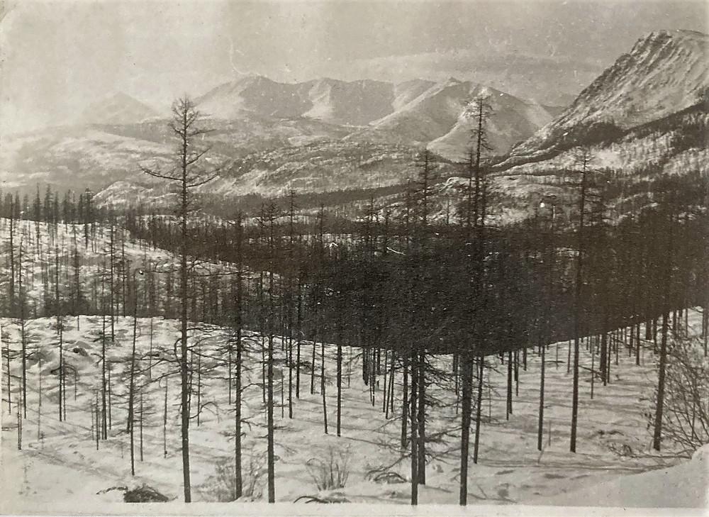 Урочище Сугджар| skitour.club| Блог Сергея Чеботова