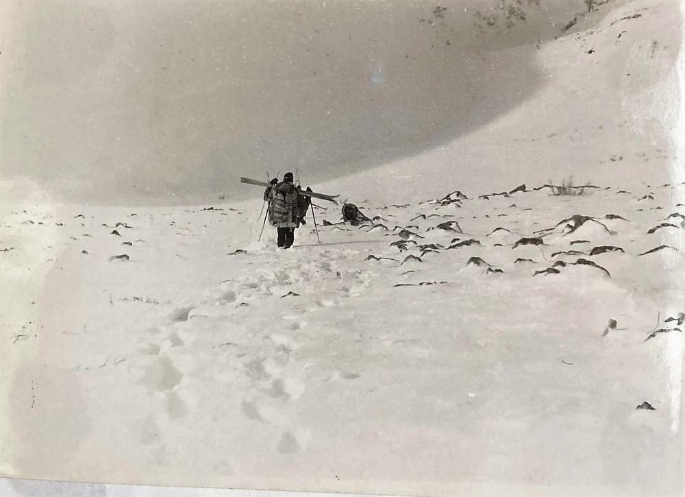 Спуск с перевала Гыдан| skitour.club| Блог Сергея Чеботова