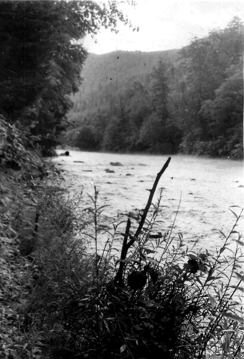 Река Тигринка
