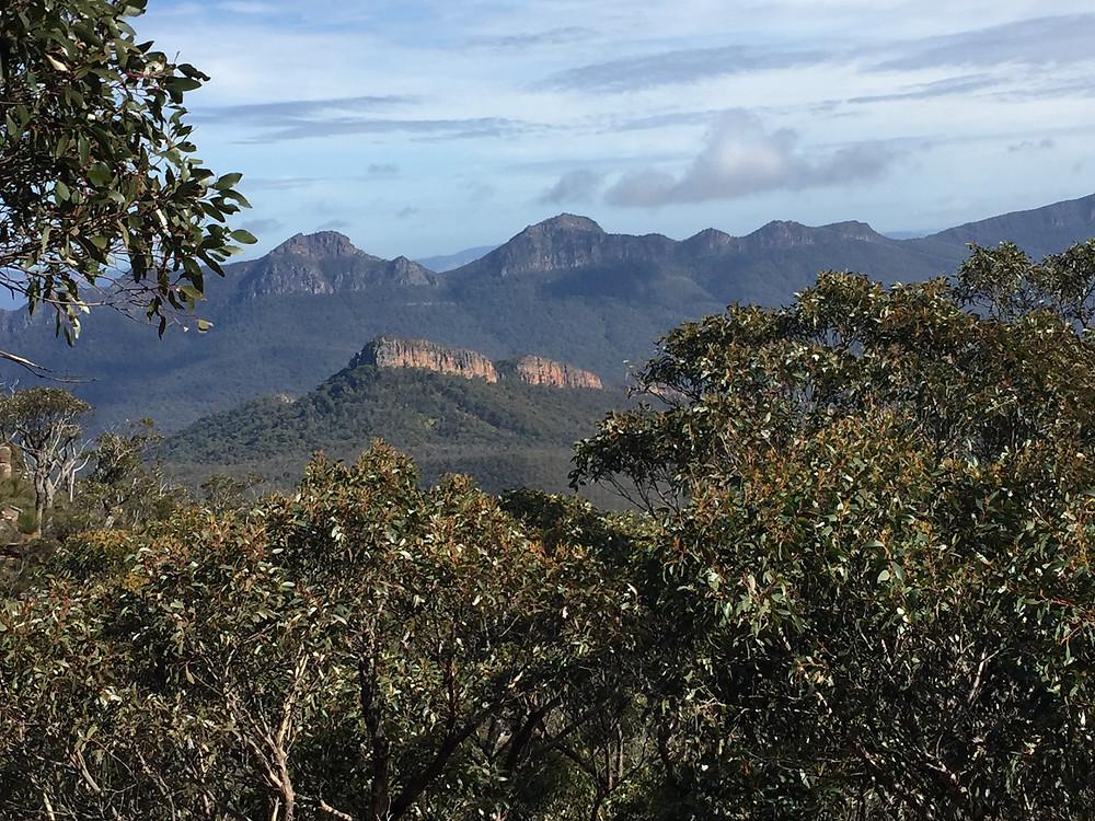 Mount William view