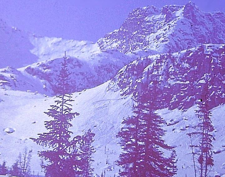 Восточные Саяны, место схода лавины.