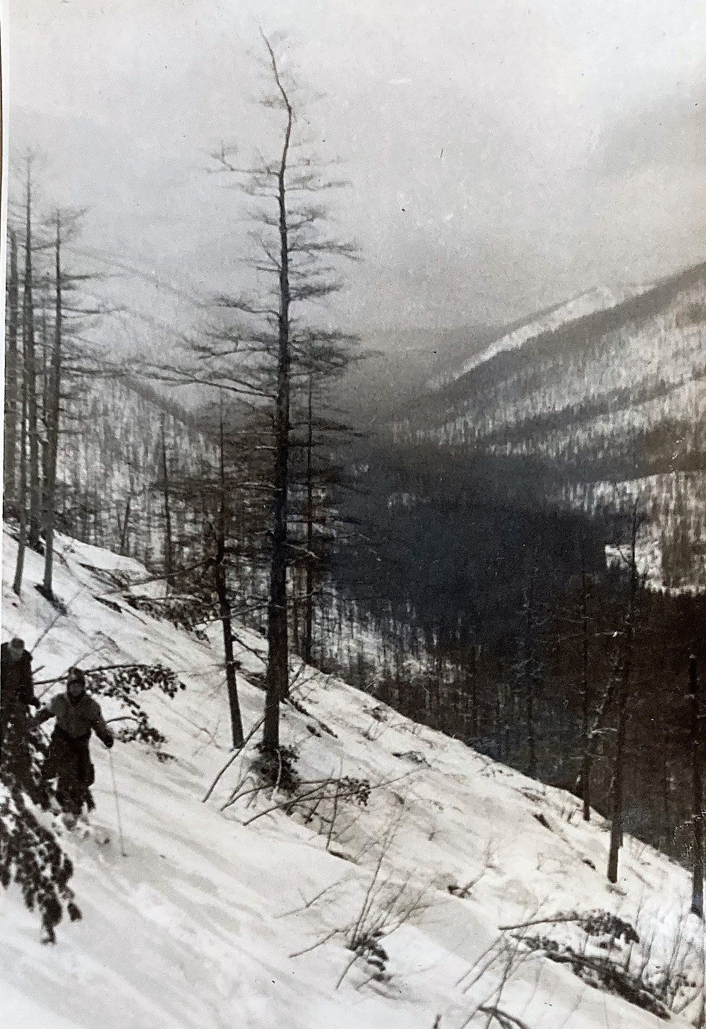 Река Малая Китэма| skitour.club| Блог Сергея Чеботова