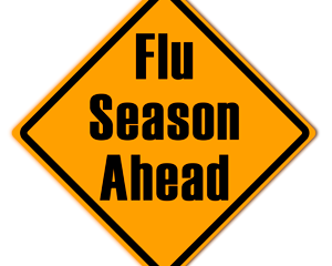Flu Vaccinations - 2020