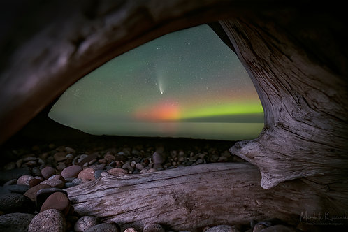 Driftwood View - Aurora and Comet NEOWISE