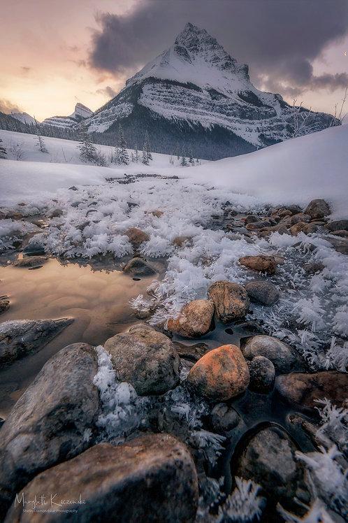 Winter Wonderland -Tangled Peak