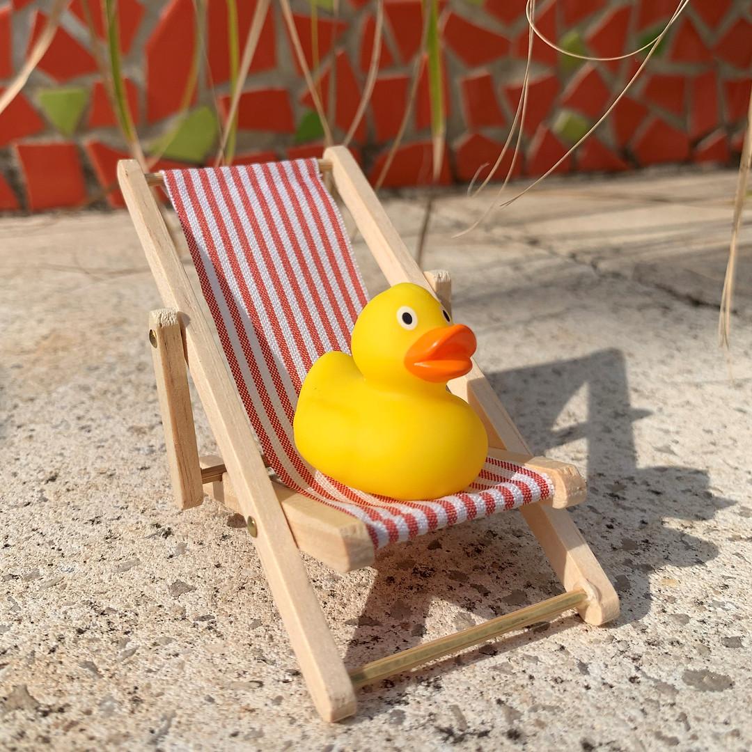Deck Chair Square.jpg