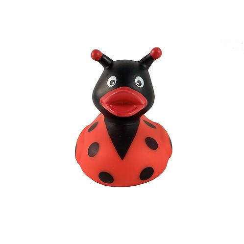 Ladybird Rubber Duck