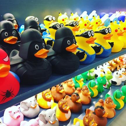 all ducks pic.jpg