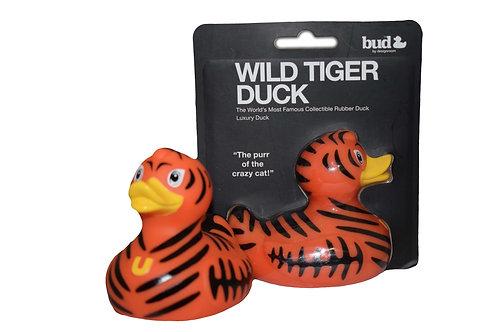 Wild Tiger Duck