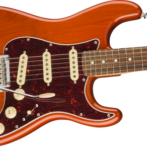 FENDER PLAYER STRATOCASTER®Special Edition