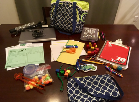 """""""What's In My Bag?"""" with Paula Offutt, OT/L"""