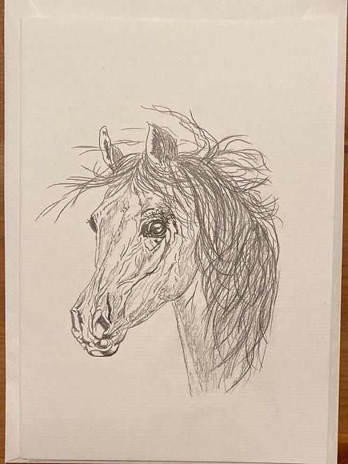 Carte - Cheval blanc