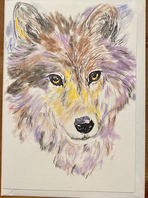 Carte - Loup mauve