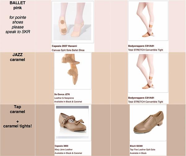 SKR Footwear Recommended.png