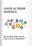 Vous êtes à la recherche d'une clef USB hébergeant un wallet contenant des cryptoactifs.  Ce support est caché dans le département de la Gironde et contient tous les éléments nécessaires pour s'approprier les fonds via la blockchain. Il ne nous est pas autorisé à communiquer sur la valeur du portefeuille numérique.
