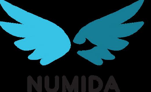 Numida_Og_v (2).png