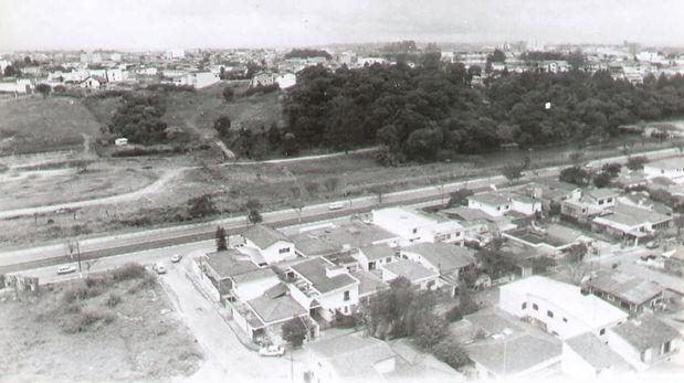 35 Bosque Maia (1974).jpg