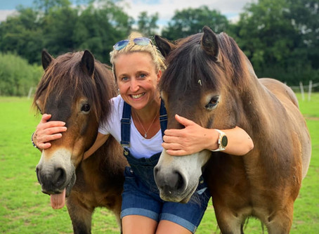OSO Arabians UK Stud Tour 2020   And that's a wrap .....