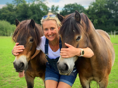 OSO Arabians UK Stud Tour 2020 | And that's a wrap .....