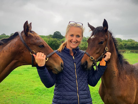 OSO Arabians UK Stud Tour 2020 | Day 5 (Pt 2): Chapel Stud (Th'bred) Bransford, Worcestershire