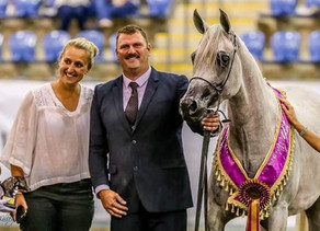 OSO Xannya takes out Champion Arabian Broodmare at 2017 East Coast Champs!