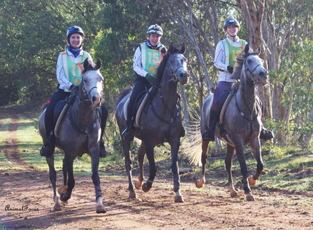 Great first ride on tough terrain at season opener | TUMUT: 7 - 8 March 2020
