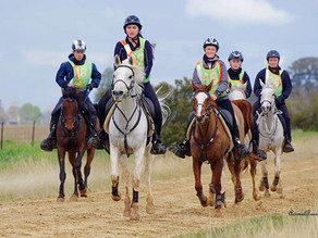 100% completion at The Rock Endurance Ride | 11 & 12 July 2020