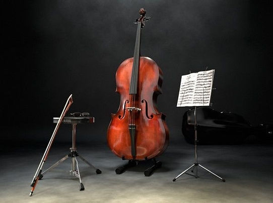 violoncelo.jpg