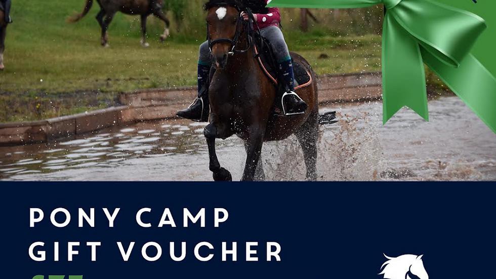 Pony Camp Deposit