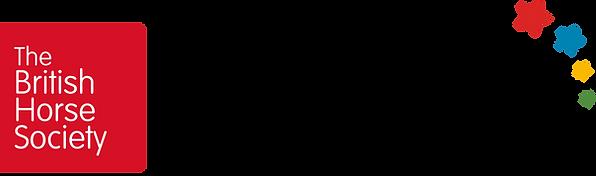 16659_BHS_Pony_Stars_Logo.png