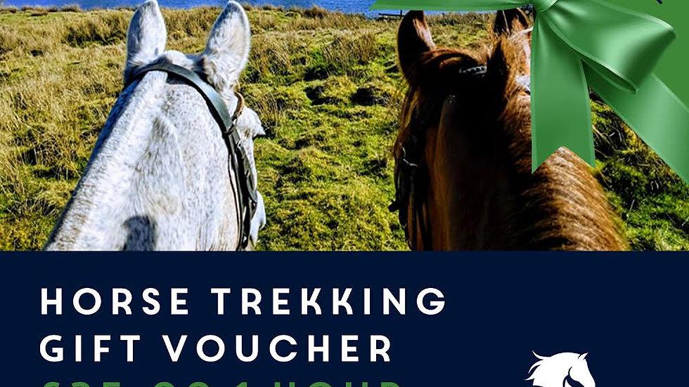 Horse Trekking (1 hour hack)