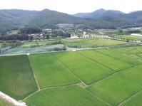 Embanked fields (Chongkwanpyong), Youngsan