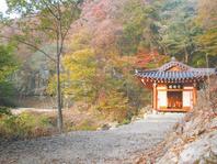 The Place, First Won-Buddhist Meditation Retreat, Mt. Mandeok
