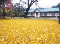 Old Public Hall (Gonghoedang), Iksan