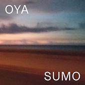 Cover_sumo.jpg