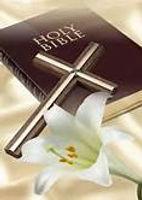 Pic of Bible for Logo.jpg