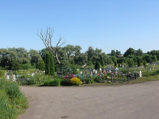 Кладбище в Узловой Тульская область Вид