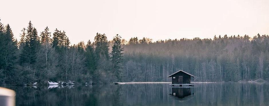 walden_pond_moses-blog_edited.jpg