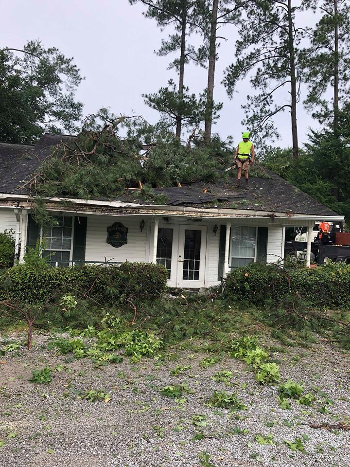 Home in Ball Tornado