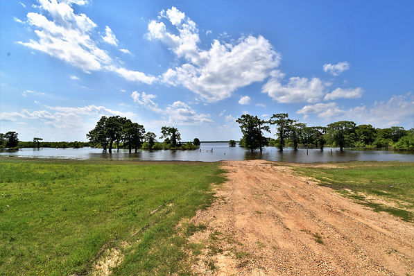 View of Catahoula Lake