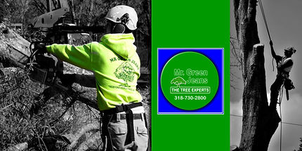 Green Jeans Tree Service