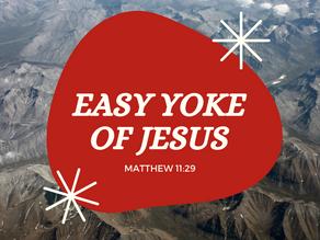 Easy yoke of Jesus