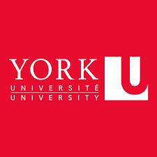 York University Article