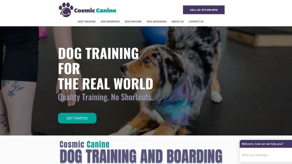Cosmic Canine Dog Training SEO and Websi